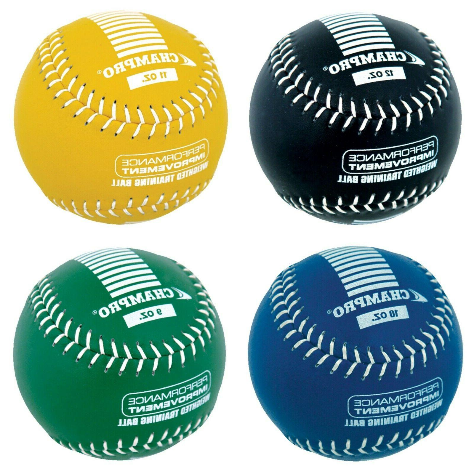 weighted training softballs various weights csb709